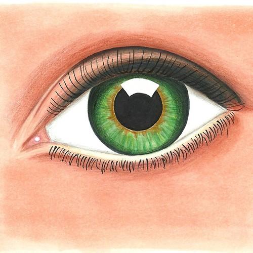Auge-Slider
