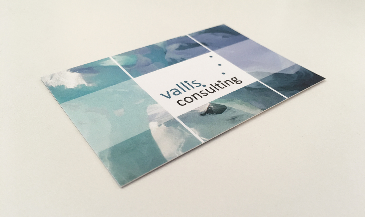 vallis-consulting2